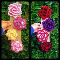 """Rose """"NoSo"""" - To buy"""