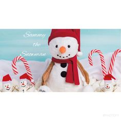 Meet our New Limited edition Scentsy Buddy Sammy the Snowman!! Available just in time to share the 2016 Christmas season with your Child!