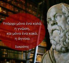 Philosophical Quotes, Socrates, Wisdom, Words, Horse