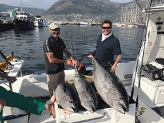 Best big game fishing charters in Cape Town, South Africa. Leading specialists in deep sea fishing. Fishing Tournaments, Cape Town South Africa, Fishing Tools, Fishing Charters, Deep Sea Fishing, Sport Fishing, Check