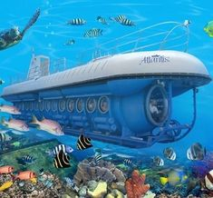 Take a submarine tour in the Cayman Islands.  They have both day and night tours.