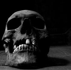 Screaming Skull, Decay, Skulls, Vanity, Beautiful, Art, Dressing Tables, Art Background, Powder Room
