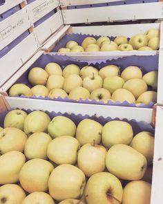 #EnjoyFruit #ByDelBello #Lovita #ItalianFlavour #TasteMe #LadyApple #FromItalyWithLove #EatItalian #WeAreComing #WeAreReady #FruitLover #instafood #PremiumQuality #GoldenDelicious #ApplesGoldenDelicious #apples #amazing #mangiamela #melamangio #EatHealthy #fruit #food #LoveNature #gnam #foodporn #fruitporn #Arabia