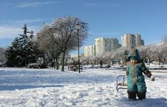 56 activități zilnice pentru copii cu vârsta 2-3 ani - Planeta Mami | Natalia Madan New York Skyline, Travel, Outdoor, Outdoors, Viajes, Destinations, Traveling, Outdoor Games, Trips