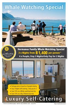 Enjoy whale watching with your family overlooking the Old Harbour in Hermanus. Apartment 301 offers luxury self-catering accommodation for families and couples looking for a little privacy. Whale Watching, A Decade, Catering, Families, Old Things, Couples, Luxury, Night, Travel