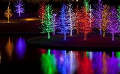 Vitruvian Lights runs through Jan. 1 in Addison. This is the 2013 display.