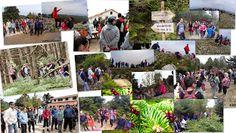 Φωτογραφία από τη βόλτα μας από το καταφύγιο Φλαμπούρι έως την κορυφή Ξεροβούνι το Σάββατο 18 Απριλίου.
