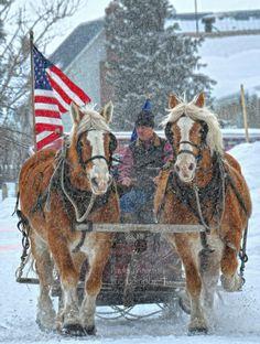 Beautiful Photo  !!!  Paula Krugerud Photography   - as we stand with hands over hearts Wisdom, Montana