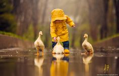 Photo Three Little Ducks by Jake Olson Studios on 500px