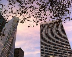 Bryant Park_Dec 3 2012
