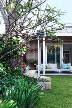 How To Create A Backyard Oasis Reaching through the frangipani branches are the long strappy leaves Sydney Gardens, Palm Beach Gardens, Back Gardens, Small Gardens, Courtyard Gardens, Modern Gardens, Small Space Gardening, Garden Spaces, Fast Growing Shade Trees