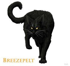 Breezepelt, son of Nightcloud and Crowfeather, a warrior, the mate of Heathertail.
