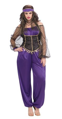Plus Size Harem Girl Sexy Costume - Belly Dancer Costumes