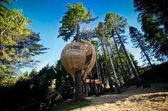 Arquitectura inspirada en la naturaleza - Tendenzias.com