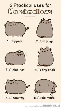 Six practical uses for marshmallows…Pusheen the cat