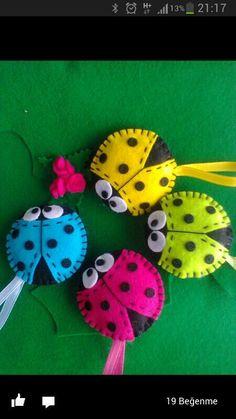 catarinas, mariquitas, lady bug