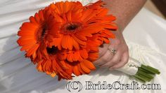 bridesmaid bouquets- all gerbers- either a mix of orange, yellow & orange yellow ombre OR  each bridesmaid gets her own color- to be matched with groomsmen's boutonnieres.
