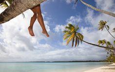 #Martinique #Karibik