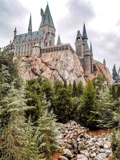 Discover recipes, home ideas, style inspiration and other ideas to try. Mundo Harry Potter, Harry Potter World, Harry Potter Castle, Harry Potter Hogwarts, Aquarell Tattoo, Harry Potter Background, Welcome To Hogwarts, Slytherin Aesthetic, Harry Potter Pictures