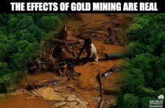 The effects of gold mining are real.