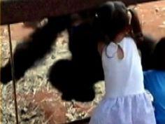 Zoo peek-a-boo 'freaks out' twins
