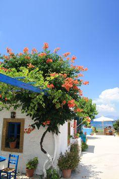 Kos, Greece.