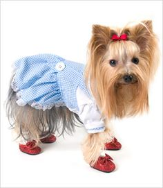 Gingham Dress Costume for Dogs