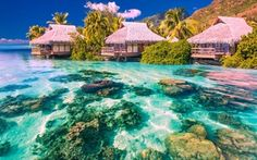 Wallpaper sea, palm trees, Bungalow, the sky, tropics, clouds