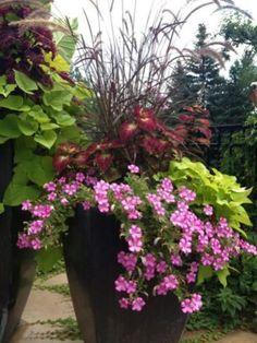 Patio Flower Ideas 16