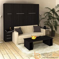 InLine Murphy Bed with Hutch and InLine Sofa-Closed