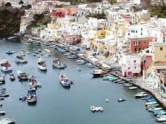 Naples, Italy...eat lots of seafood and margherita pizza! Then, cruise over to Pompeii for a tour!