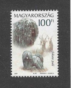 Hungarian Puli, Puli Dog, Herding Dogs, Dog Show, Dog Art, Postage Stamps, Dog Breeds, Hungary, Animals