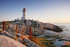 #Lighthouse #Light #Sunset #Sea #Pretty