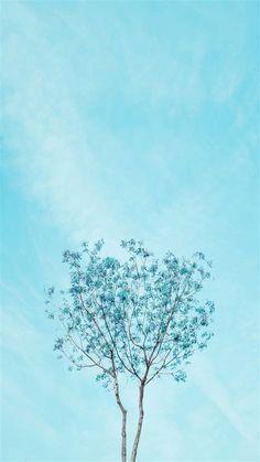 Aesthetic Wallpaper Baby Blue