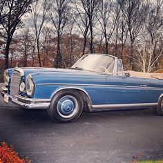 A glorious and exceedingly rare 300 SE Cabriolet. Anyone out there know how many of these were built in total? Custom Mercedes, Mercedes 300, Mercedes Benz Cars, Jaguar, Convertible, Commercial Van, Mercedez Benz, Daimler Benz, Classic Mercedes