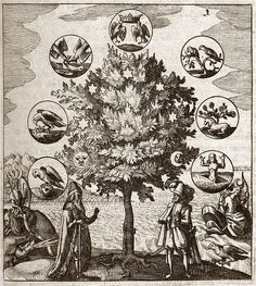 Alchemical Tree, Philosophia Reformata   by Middle Temple Library#  Engraving depicting a tree surrounded by figures used in allegory by alchemists. The tree itself carries symbols representing the Moon, Sun and five planets. Around it are discs carrying symbols such as various birds, a unicorn and a body rising from a grave, showing the stages of life. This engraving comes from Philosophia reformata by Johann Daniel Mylius, printed at Frankfurt in 1622