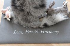 Love, Pets & Harmony #yoga #yogamatte #yogawithpets #dog #hund #yogahund #yogadog Pets, Animals, Yoga Dog, Animaux, Animal, Animales, Animais