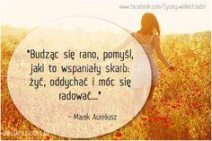 Budząc się rano, pomyśl, jaki to wspaniały skarb żyć... #Marek-Aureliusz,  #Radość, #Szczęście, #Życie