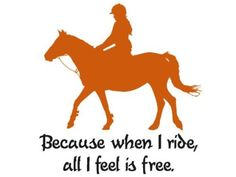 Horse decal-Quote decal-Horse wall decor-28 X 30 inches, by aluckyhorseshoe by aluckyhorseshoe, http://www.amazon.com/dp/B00BWF7IXY/ref=cm_sw_r_pi_dp_pF16rb1YF2BY7