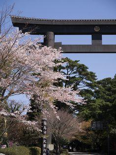 霧島神宮 Kirishima Shrine / Kagoshima, Japan