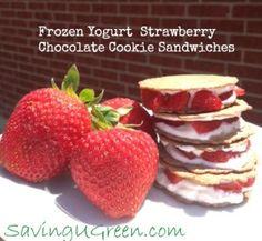 Frozen Yogurt Strawberry Chocolate Cookie Sandwiches Only 50 Calories - Saving U Green