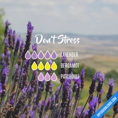 Very Helpful Essential Oil Patchouli Tips For Patchouli Essential Oil blends diffuser Patchouli Essential Oil, Essential Oil Diffuser Blends, Essential Oil Uses, Doterra Essential Oils, Yl Oils, Essential Oil Combinations, Aromatherapy Oils, Aromatherapy Recipes, Perfume