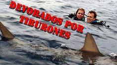 Viste La Pelicula Mar Abierto Esta Es La Historia Real Peliculas Historias Reales Historia
