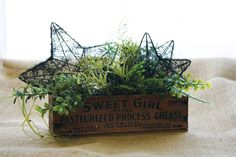 Miafae Designs - greenery arrangement in antique, wooden cheese box.