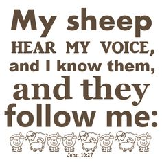 John My sheep hear my voice, and I know. Favorite Bible Verses, Bible Verses Quotes, Scriptures, Jesus Loves Us, God Loves You, Lord Is My Shepherd, The Good Shepherd, John 10 27, Psalm 119 105