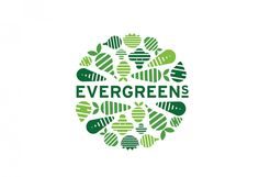 Evergreens Salad Restaurant Branding