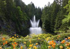 Butchart Gardens | Butchart Gardens Fountain Photograph - Butchart Gardens Fountain Fine ...