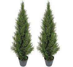 TWO Pre-potted 4' Artificial Cedar Topiary Outdoor Indoor Tree Arcadia Silk Plantation,http://www.amazon.com/dp/B0019903VM/ref=cm_sw_r_pi_dp_N2WFsb1K50HS0SEK