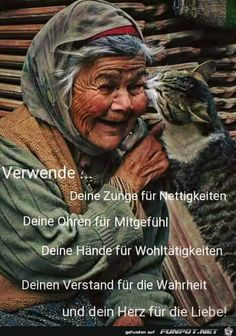 Even old people have the rights to love there animals this is love ❤️ someone that cares about there pet just like a family together and forever always there for each other. Crazy Cat Lady, Crazy Cats, I Love Cats, Cute Cats, Amor Animal, Photo Portrait, Tier Fotos, Cat People, Jolie Photo