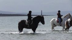 This was her second time riding in the ocean. Chunky Monkey, Horses For Sale, Show Jumping, Irish, Hunting, Ocean, Cob, Beach, Animals